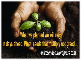 Plant seed not greed